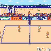 онлайн игра Kings of the Beach / Короли пляжа