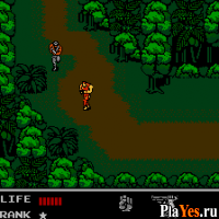 онлайн игра Snake's Revenge / Змея возвращается