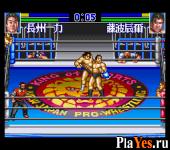 Shin Nippon Pro Wresling 95 Tokyo Dome Battle 7