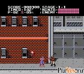 онлайн игра Ninja Gaiden / Ниндзя Гайдн
