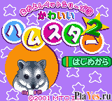 онлайн игра Nakayoshi Pet Series 5 - Kawaii Hamster 2