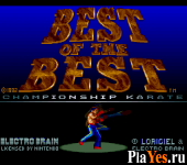 онлайн игра Best of the Best - Championship Karate
