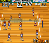 Multi Play Volleyball