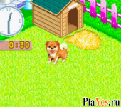 онлайн игра Nakayoshi Pet Advance Series 2 - Kawaii Koinu