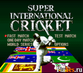 онлайн игра Super International Cricket