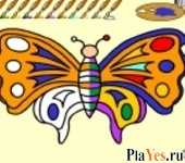 ������ ���� Butterfly Coloring